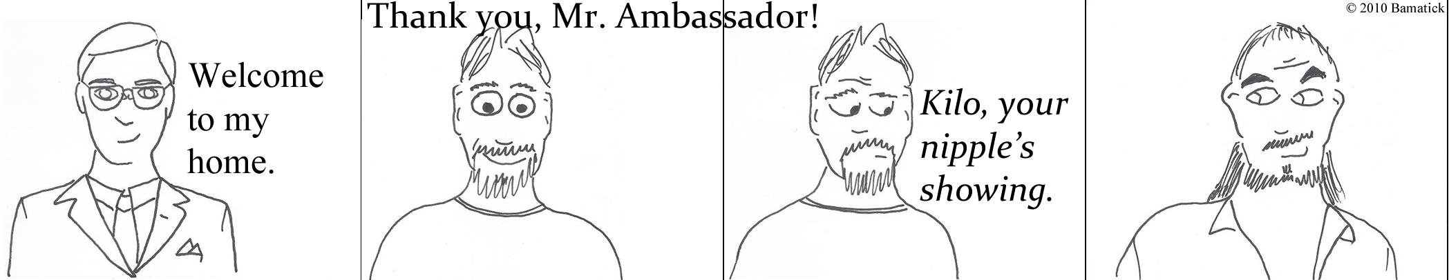 Ambassador's House